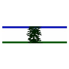 Flag Of Cascadia Satin Scarf (oblong) by abbeyz71