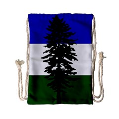 Flag Of Cascadia Drawstring Bag (small) by abbeyz71