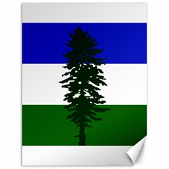Flag 0f Cascadia Canvas 12  X 16   by abbeyz71