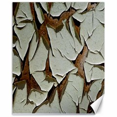 Dry Nature Pattern Background Canvas 16  X 20