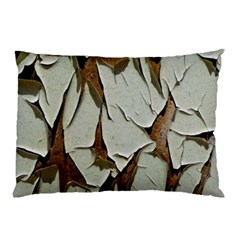 Dry Nature Pattern Background Pillow Case by Nexatart