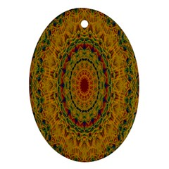 India Mystic Background Ornamental Oval Ornament (two Sides)