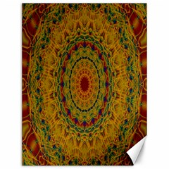 India Mystic Background Ornamental Canvas 12  X 16