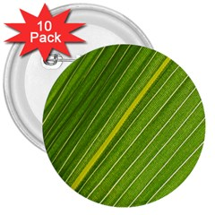 Leaf Plant Nature Pattern 3  Buttons (10 Pack)