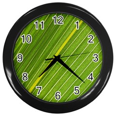 Leaf Plant Nature Pattern Wall Clocks (black) by Nexatart