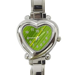 Leaf Plant Nature Pattern Heart Italian Charm Watch by Nexatart