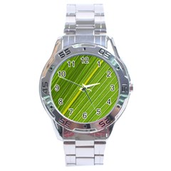 Leaf Plant Nature Pattern Stainless Steel Analogue Watch by Nexatart