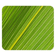 Leaf Plant Nature Pattern Double Sided Flano Blanket (small)