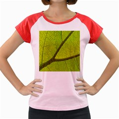 Green Leaf Plant Nature Structure Women s Cap Sleeve T Shirt