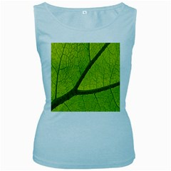 Green Leaf Plant Nature Structure Women s Baby Blue Tank Top