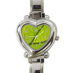 Green Leaf Plant Nature Structure Heart Italian Charm Watch by Nexatart