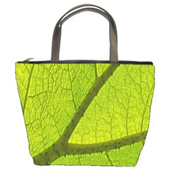Green Leaf Plant Nature Structure Bucket Bags by Nexatart