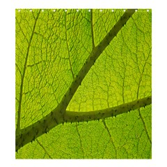 Green Leaf Plant Nature Structure Shower Curtain 66  X 72  (large)  by Nexatart