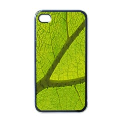 Green Leaf Plant Nature Structure Apple Iphone 4 Case (black) by Nexatart