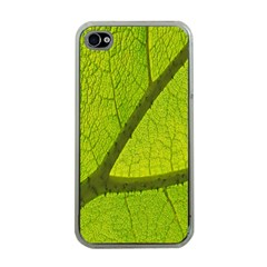 Green Leaf Plant Nature Structure Apple Iphone 4 Case (clear)