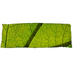 Green Leaf Plant Nature Structure Body Pillow Case (dakimakura)