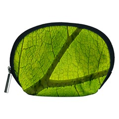 Green Leaf Plant Nature Structure Accessory Pouches (medium)  by Nexatart