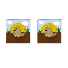 Groundhog Day Cufflinks (square) by Valentinaart