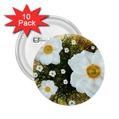 Summer Anemone Sylvestris 2 25  Buttons (10 Pack)
