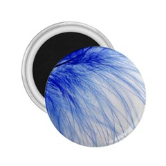 Feather Blue Colored 2 25  Magnets