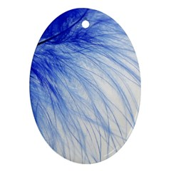 Feather Blue Colored Ornament (oval)