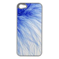 Feather Blue Colored Apple Iphone 5 Case (silver) by Nexatart