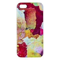 Art Detail Abstract Painting Wax Apple Iphone 5 Premium Hardshell Case