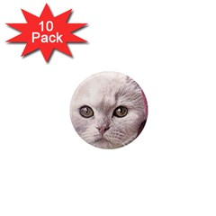Cat Pet Cute Art Abstract Vintage 1  Mini Magnet (10 Pack)