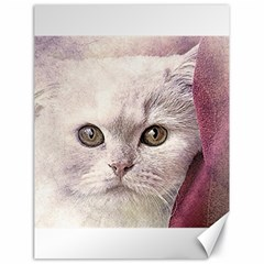 Cat Pet Cute Art Abstract Vintage Canvas 18  X 24