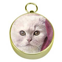 Cat Pet Cute Art Abstract Vintage Gold Compasses