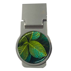 Green Plant Leaf Foliage Nature Money Clips (round)  by Nexatart