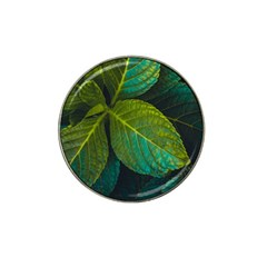 Green Plant Leaf Foliage Nature Hat Clip Ball Marker by Nexatart