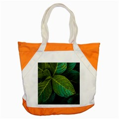 Green Plant Leaf Foliage Nature Accent Tote Bag