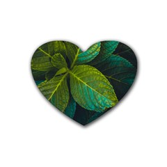 Green Plant Leaf Foliage Nature Heart Coaster (4 Pack)  by Nexatart