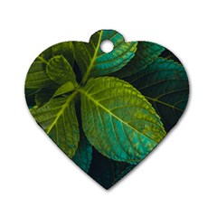 Green Plant Leaf Foliage Nature Dog Tag Heart (one Side) by Nexatart