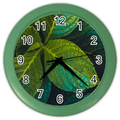 Green Plant Leaf Foliage Nature Color Wall Clocks by Nexatart