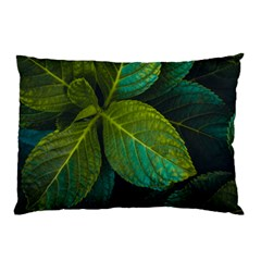 Green Plant Leaf Foliage Nature Pillow Case by Nexatart