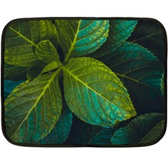 Green Plant Leaf Foliage Nature Fleece Blanket (mini) by Nexatart