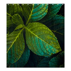 Green Plant Leaf Foliage Nature Shower Curtain 66  X 72  (large)  by Nexatart