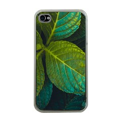 Green Plant Leaf Foliage Nature Apple Iphone 4 Case (clear) by Nexatart