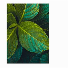 Green Plant Leaf Foliage Nature Large Garden Flag (two Sides) by Nexatart
