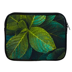 Green Plant Leaf Foliage Nature Apple Ipad 2/3/4 Zipper Cases by Nexatart