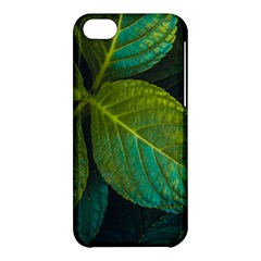 Green Plant Leaf Foliage Nature Apple Iphone 5c Hardshell Case by Nexatart