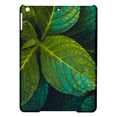 Green Plant Leaf Foliage Nature Ipad Air Hardshell Cases by Nexatart
