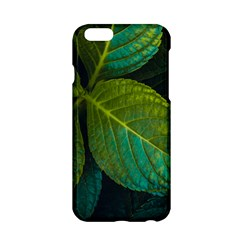 Green Plant Leaf Foliage Nature Apple Iphone 6/6s Hardshell Case by Nexatart