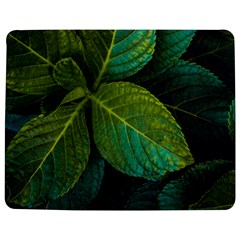 Green Plant Leaf Foliage Nature Jigsaw Puzzle Photo Stand (rectangular) by Nexatart