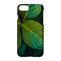 Green Plant Leaf Foliage Nature Apple Iphone 7 Hardshell Case by Nexatart