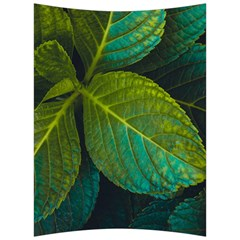 Green Plant Leaf Foliage Nature Back Support Cushion