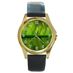 Leaf Nature Green The Leaves Round Gold Metal Watch by Nexatart