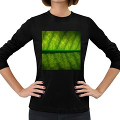 Leaf Nature Green The Leaves Women s Long Sleeve Dark T Shirts